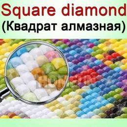 HOMFUN DIY foto personalizado de foto de pintura de diamantes de imitación diamante bordado con ornamentación con cuentas 5D Cru