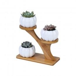 Maceta de plantas suculentas blancas simples, sostenedor de cerámica, búho, calabaza, patrón, maceta, en forma de taza de Bambú