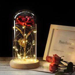 6 colores La Bella y La Bestia rosa roja en una cúpula de cristal sobre una Base de madera para regalos de San Valentín lámparas